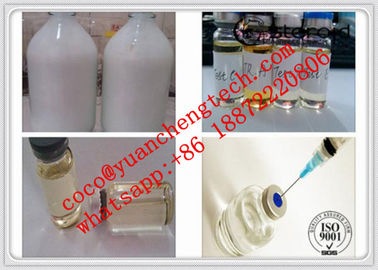 China Testosterone Suspension100 Water Based Steroids Test Suspension 100mg/Ml Tne Suspension fábrica